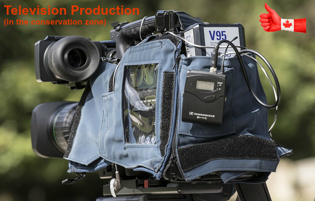 Television and Movie Production